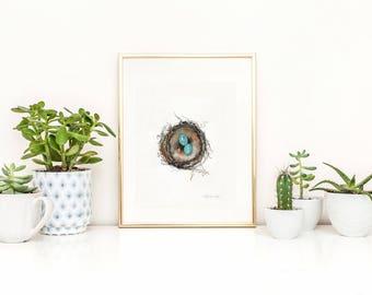 Nest Print, Bird Art, Robins Nest Print,  Robin eggs, blue, Watercolor Print, Mother's Day Gift, Home Decor