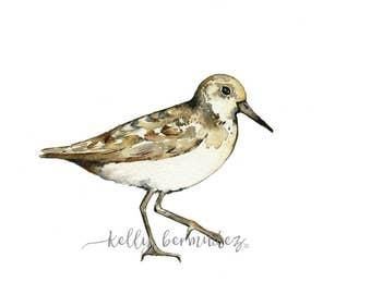 Sand Piper Watercolor, Wall Art, Bird Art, Beach Art, Printable Art, Printable Watercolor, Instant Download