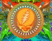Official PATCH GRATEFUL DEAD Orange Sunshine  3.5 Iron on