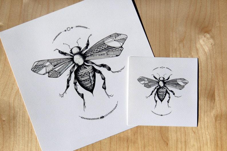 Wasp image 0