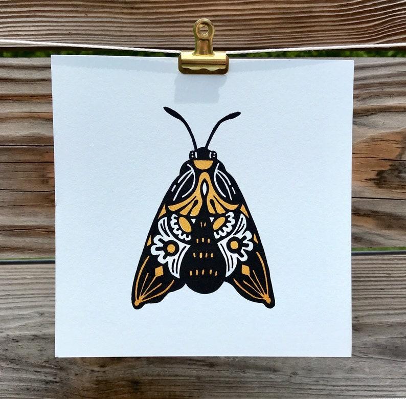 Mini Moth image 0