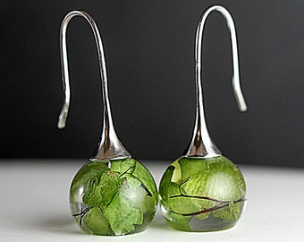 Real leaf earrings. Maidenhair fern in resin spheres. Silver earwires. Big earrings. Gift for her.