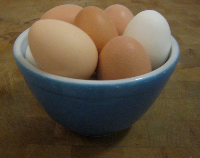 Featured listing image: 12 Chicken Craft Eggs