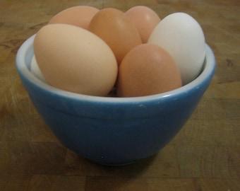12 Chicken Craft Eggs
