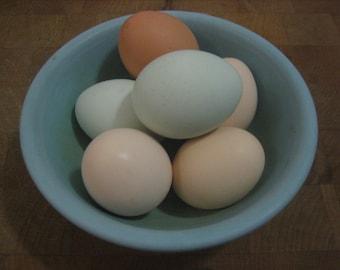 6 Mini Chicken Craft Eggs