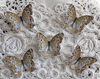 Reneabouquets Tiny Treasures Butterfly Set-  Lady Godiva Glitter Glass Butterflies Scrapbook Embellishment, Home Decor, , Wedding