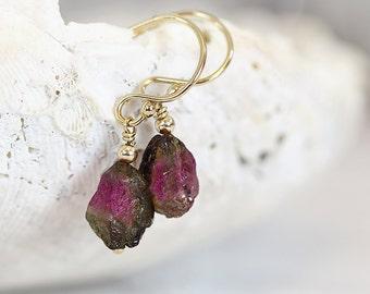 Watermelon Tourmaline Earrings - Raw Stone Earrings - October Birthstone Earrings - Raw Tourmaline Earrings - Tiny Stone Earrings