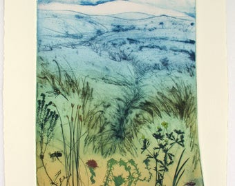 Dartmoor Magnificent Mires. Botanical print and wildlife of blanket bogs.