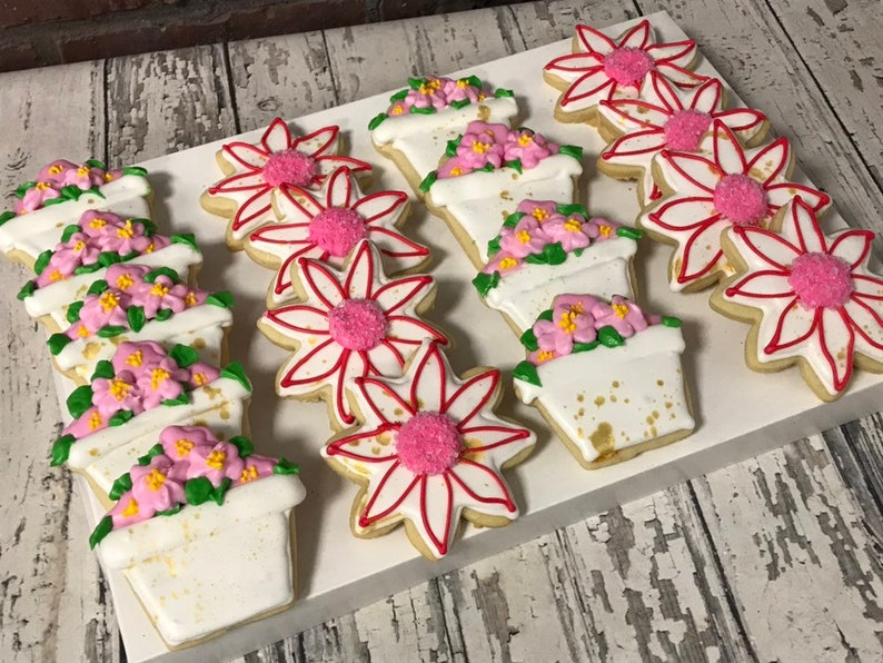 Etsy & Flower pot flower cookies - flower cookies favors Kosher - Handmade - 1 Dozen