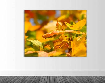 Autumn Leaves Wall Decal, Vinyl Wall Graphics, Photography Decal, Fall Decor, Texture Photography, Photo by Abby Smith, (FREE SHIPPING)