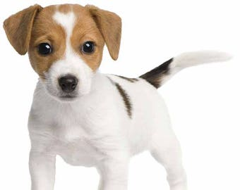Beagle Puppy Decal, Vinyl Puppy Sticker, Vinyl Wall Decal, Infinite Graphics, Beagle Puppy, Kid's Bedroom Decor, Wall Art, Stickers, Puppy