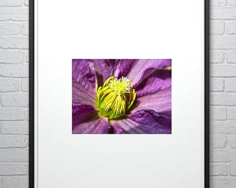 Purple Floral Photography, Photography, Nature Photo, Home Decor, Photo by Abby Smith, Floral Wall Art, Unframed Print, Wall Art, Full Color