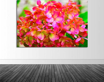Hydrangea Wall Decal, Vinyl Wall Sticker, Floral Home Decor, Pink Flower, Photo by Abby Smith, Infinite Graphics, Pink Hydrangea, Wall Decal