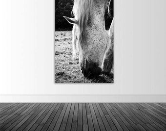 White Horse Decal, Horse Decor, Vinyl Wall Decal, Wall Sticker, BW Photography, Photo by Abby Smith, Infinite Graphics, Wall Graphics, Decal