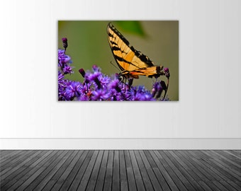 Butterfly Wall Decal, Monarch Butterfly, Vinyl Wall Decal, Butterfly Art, Photo by Abby Smith, Infinite Graphics, Home Decor, Wall Graphics