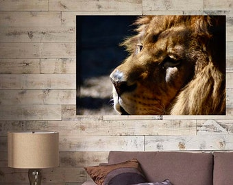 Lion Wall Decal, Lion Photography, Rustic Home Decor, Home Decor, African Art, Vinyl Wall Decal, Lion Wall Sticker, Lion, Lion Photo Decal