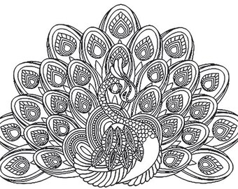 Peacock Wall Decal, Stress Coloring Decal, Vinyl Wall Decal, Peacock Graphic, Do it Yourself Decal, Coloring, Infinite Graphics