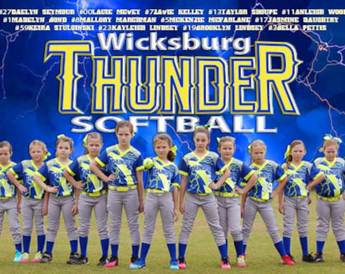 Featured listing image: Softball Banner, Sports Banner, Vinyl Banner, Custom Banner, Event Banner, Team Banner, League Banners, Tournament Banners, Photo Banners