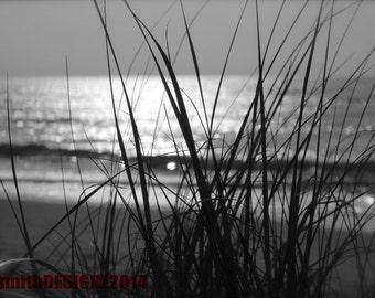 Black & White Photography, Sunrise Photography, Ocean Landscape Photo, Sunrise, Beach Photography, Ocean Reflection, Home Decor, Abby Smith