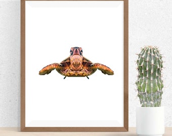 Sea Turtle Art, Polygonal Art, Abstract Print, Sea Turtle Design, Symmetric Design, Modern Art, Infinite Graphics, by Abby Smith, Geometric
