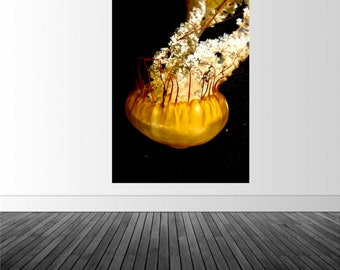 Jelly Fish Wall Decal, Jelly Fish Photo, Marine Photography, Photo by Abby Smith, Infinite Graphics, Home Decor, Wall Art, Vinyl Graphics