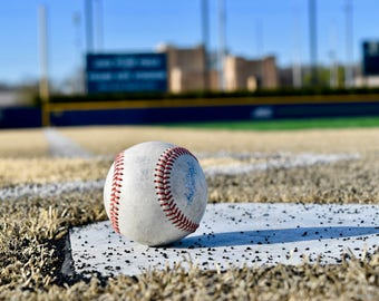Baseball Stadium, Frank Eck Baseball Stadium, Vinyl Wall Decal, Infinite Graphics, Notre Dame University, Notre Dame Baseball, Stadium Mural