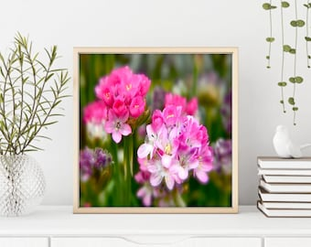 Floral Photography, Pink Flowers, Photography, Garden Art,  Flowers Bunches, Floral Wall Mural, Fine Art Print, Home Decor, Unframed Print