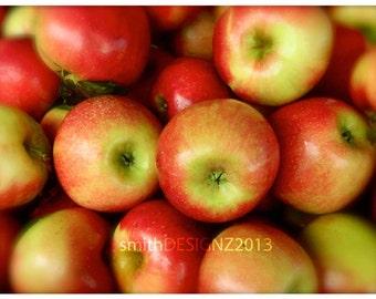 Apple Photography, Fruit Photography, Apples, Apple Themed Decor, Kitchen Wall Decor, Apple Harvest Photo, Photo by Abby Smith, Unframed Art
