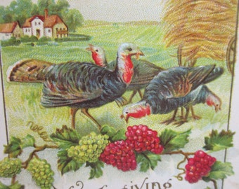 Unused 1910's-20's embossed gold gilded thanksgiving greeting postcard farmland with haystack turkeys grapevines