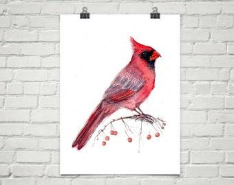 Cardinal - Art Print of Watercolor Painting - new year winter holidays birds nature bird new years Christmas purple berries winter cards