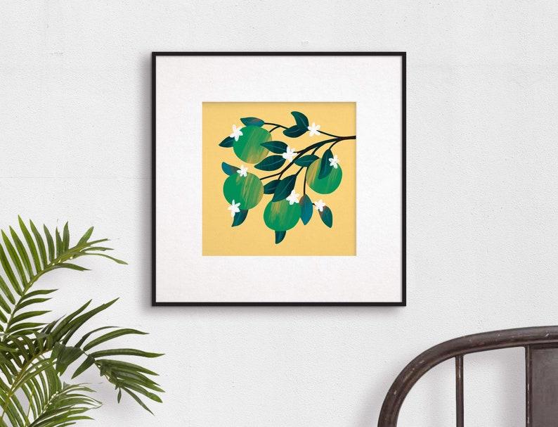 Lime Citrus Art Print