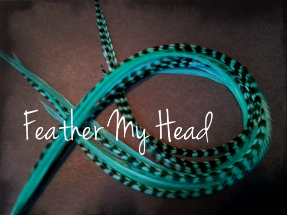 "Feather Extension For Hair Super Long 11/""- 14/"" Whiting Eurohackle Aqua"