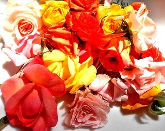 FRESH PASTEL ROSES.Edible Organic Roses, Cake Toppers, Edible Flowers, Pastels, 25 Assortment