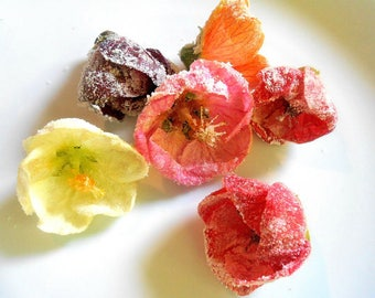 EDIBLE FLOWERS HIBISCUS, Edible  Flowers, Salads, Garnishes Hors d'oeuvre Toppers 25