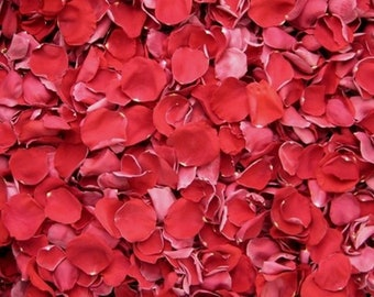 Scented WEDDING TOSS PETALS Red Fresh Freeze Dried, Bio-degradable, Real Rose Petals, Wedding Color Match, Bulk Orders