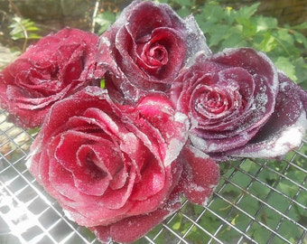 Sugar Coated Roses, Crystallized Roses, Edible Flowers, Weddings, Anniversariers, Cupcake Toppers, Cake Decorations