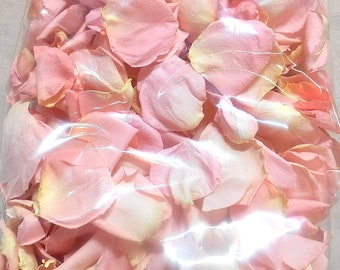 WEDDING TOSS PETALS Scented or Unscented Blush Pink Fresh Freeze Dried, Bio-degradable, Real Rose Petals, Weddings, 8 cups, Bulk Orders