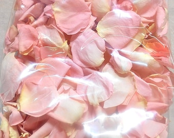 Baby Powder Scented BABY SHOWER PETALS Pink Fresh Freeze Dried, Bio-degradable, Real Rose Petals, Pink and Gold Shower, Safe to Touch
