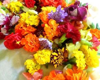 FRESH EDIBLE FLOWER Collection 150 - 200 Blooms Summer Wedding Flower Girl Baskets Flowers Toss Wedding Cakes Edible flower