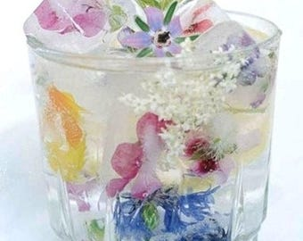 EDIBLE FLOWERS BORAGE, Edible Deep Blue Flowers, Salads, Ice Garnishes Hors d'oeuvre Toppers 100 Edible Flowers drink garnish edible