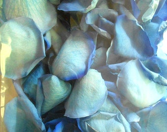 Scented WEDDING TOSS PETALS Cobalt Blue Fresh Freeze Dried, Bio-degradable, Real Rose Petals, Wedding Color Match, Bulk Orders