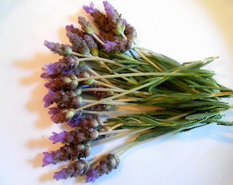FRESH FLOWERING LAVENDER, Lavender Branches Fragrant Edible Decorative 25 stems