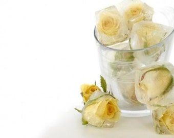 24 EDIBLE MINIATURE ROSE Buds Wedding Event Ice Cube Flowers - Fresh Organic Edible  - Real Roses, Flowers,