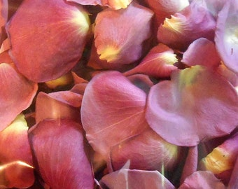 Scented WEDDING TOSS PETALS Lilac Lavender Fresh Freeze Dried, Bio-degradable, Real Rose Petals, Wedding Color Match, Bulk Orders