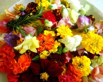 EDIBLE MIXED FLOWER Collection Dinner Parties, Salad Toppers, Plate Garnished, Meat and Poutry Companion