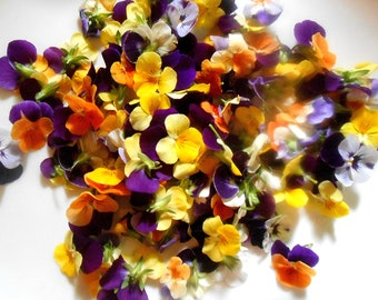 EDIBLE FLOWERS VIOLAS Bright Color Collection Fresh, Edible Flower, Salads, Baking, Drink Toppers, Cupcake Toppers, Cake Decorations 50