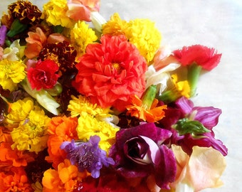 FRESH EDIBLE Mixed FLOWER Collection Dinner Parties, Salad Toppers, Plate Garnished, Meat and Poutry Companion