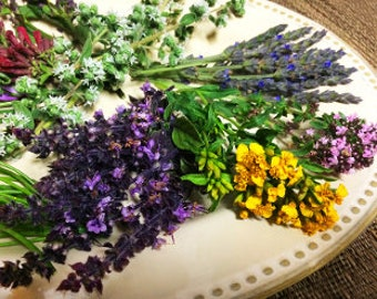 FRESH HERB FLOWERS, Mix Branches Fragrant Edible Decorative Basil, Thyme, Lavender more 50 stems