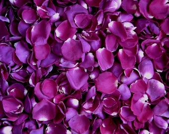 Scented WEDDING TOSS PETALS Magenta Fresh Freeze Dried, Bio-degradable, Real Rose Petals, Wedding Color Match, Bulk Orders