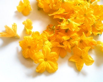EDIBLE CUCUMBER BLOSSOMS Organic Fresh or Candied, Bright Yellow Flowers, Bulk, Salads, Wedding Cakes, Edible Flowers